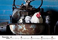 Hühner 2019 - Produktdetailbild 12