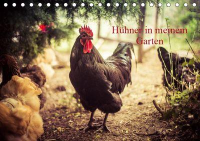 Hühner in meinem Garten (Tischkalender 2019 DIN A5 quer), Manuela Meyer