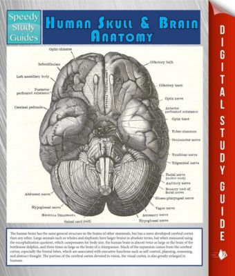 a study on the reducibility of the human brain Since the 1960s and 1970s, psychologists have tended to view the human brain as a kind of computer when you study psychology.