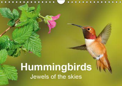 Hummingbirds Jewels of the skies (Wall Calendar 2019 DIN A4 Landscape), BIA - birdimagency