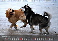 Hunde am Meer - Spielen, toben und rennen (Wandkalender 2019 DIN A4 quer) - Produktdetailbild 2