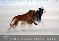 Hunde am Meer - Spielen, toben und rennen (Wandkalender 2019 DIN A4 quer) - Produktdetailbild 8