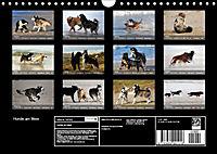 Hunde am Meer - Spielen, toben und rennen (Wandkalender 2019 DIN A4 quer) - Produktdetailbild 13