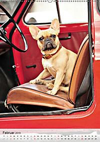 Hundepersönlichkeiten (Wandkalender 2019 DIN A2 hoch) - Produktdetailbild 2