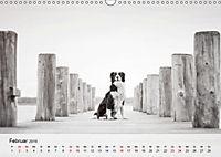 Hundeportraits 2019 (Wandkalender 2019 DIN A3 quer) - Produktdetailbild 2