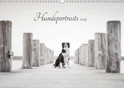 Hundeportraits 2019 (Wandkalender 2019 DIN A3 quer), Janice Pohle