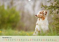Hundeportraits 2019 (Wandkalender 2019 DIN A3 quer) - Produktdetailbild 11
