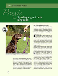 Hundeschule für jeden Tag - Produktdetailbild 8