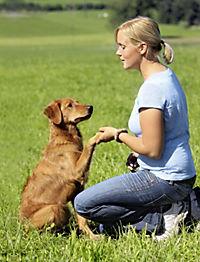 Hundeschule für jeden Tag - Produktdetailbild 6