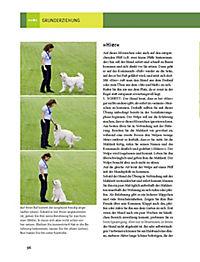 Hundeschule für jeden Tag - Produktdetailbild 9