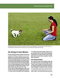 Hundeschule für jeden Tag - Produktdetailbild 7