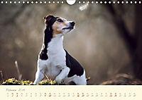 Hundeseele (Wandkalender 2019 DIN A4 quer) - Produktdetailbild 2