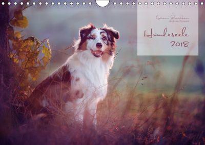 Hundeseele (Wandkalender 2019 DIN A4 quer), Katrin Buttkau