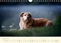 Hundeseele (Wandkalender 2019 DIN A4 quer) - Produktdetailbild 3