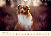 Hundeseele (Wandkalender 2019 DIN A4 quer) - Produktdetailbild 8