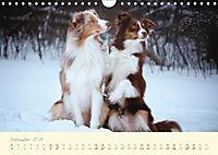 Hundeseele (Wandkalender 2019 DIN A4 quer) - Produktdetailbild 12