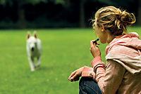 Hundetraining mit Martin Rütter - Produktdetailbild 1