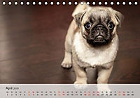 Hundisch (Tischkalender 2019 DIN A5 quer) - Produktdetailbild 4