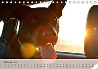 Hundisch (Tischkalender 2019 DIN A5 quer) - Produktdetailbild 2