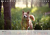 Hundisch (Tischkalender 2019 DIN A5 quer) - Produktdetailbild 5