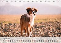 Hundisch (Tischkalender 2019 DIN A5 quer) - Produktdetailbild 8