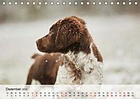 Hundisch (Tischkalender 2019 DIN A5 quer) - Produktdetailbild 12