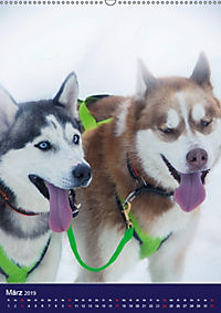 Huskies - Artwork (Wandkalender 2019 DIN A2 hoch) - Produktdetailbild 3