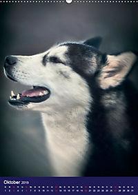 Huskies - Artwork (Wandkalender 2019 DIN A2 hoch) - Produktdetailbild 10