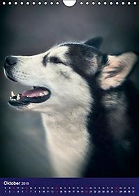 Huskies - Artwork (Wandkalender 2019 DIN A4 hoch) - Produktdetailbild 10