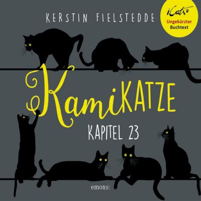iCats: Kamikatze, Kapitel 23: Volle Dröhnung, Kerstin Fielstedde