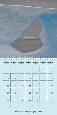 ICE (Wall Calendar 2019 300 × 300 mm Square) - Produktdetailbild 6