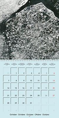 ICE (Wall Calendar 2019 300 × 300 mm Square) - Produktdetailbild 10