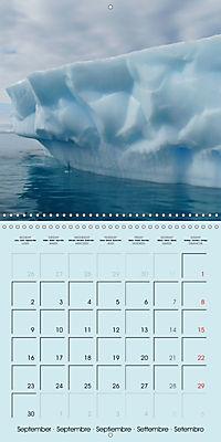ICE (Wall Calendar 2019 300 × 300 mm Square) - Produktdetailbild 9