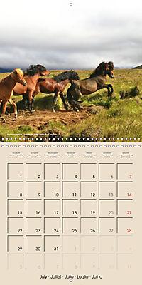 ICELANDIC HORSES from BRIMILSVELLIR (Wall Calendar 2019 300 × 300 mm Square) - Produktdetailbild 7