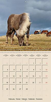 ICELANDIC HORSES from BRIMILSVELLIR (Wall Calendar 2019 300 × 300 mm Square) - Produktdetailbild 2