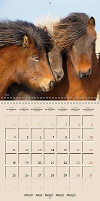 ICELANDIC HORSES from BRIMILSVELLIR (Wall Calendar 2019 300 × 300 mm Square) - Produktdetailbild 3