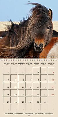 ICELANDIC HORSES from BRIMILSVELLIR (Wall Calendar 2019 300 × 300 mm Square) - Produktdetailbild 11