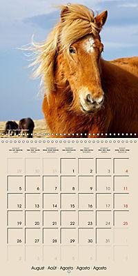 ICELANDIC HORSES from BRIMILSVELLIR (Wall Calendar 2019 300 × 300 mm Square) - Produktdetailbild 8