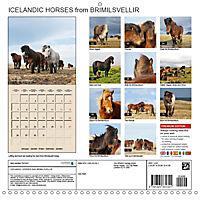 ICELANDIC HORSES from BRIMILSVELLIR (Wall Calendar 2019 300 × 300 mm Square) - Produktdetailbild 13