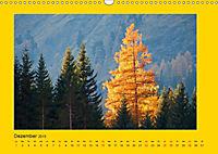 Ich liebe Gelb (Wandkalender 2019 DIN A3 quer) - Produktdetailbild 12