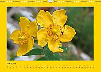 Ich liebe Gelb (Wandkalender 2019 DIN A3 quer) - Produktdetailbild 3
