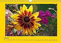 Ich liebe Gelb (Wandkalender 2019 DIN A4 quer) - Produktdetailbild 6