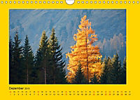 Ich liebe Gelb (Wandkalender 2019 DIN A4 quer) - Produktdetailbild 12