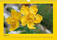 Ich liebe Gelb (Wandkalender 2019 DIN A4 quer) - Produktdetailbild 3