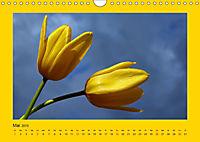 Ich liebe Gelb (Wandkalender 2019 DIN A4 quer) - Produktdetailbild 5