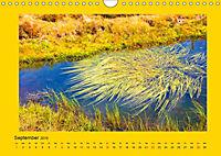 Ich liebe Gelb (Wandkalender 2019 DIN A4 quer) - Produktdetailbild 9