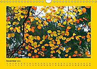 Ich liebe Gelb (Wandkalender 2019 DIN A4 quer) - Produktdetailbild 11