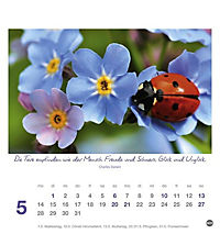 Ich wünsch dir Tage voller Glück Postkartenkalender 2018 - Produktdetailbild 5