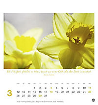 Ich wünsch dir Tage voller Glück Postkartenkalender 2018 - Produktdetailbild 3