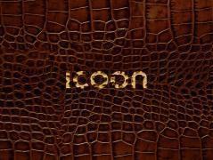 ICOON croco - globales Bilderwörterbuch, Gosia Warrink